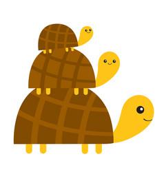 Three turtle tortoise pyramid cute cartoon vector