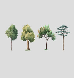 Watercolor tree forest oak fir birch thuja vector