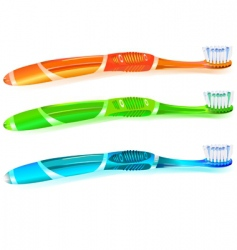 colorful toothbrush vector image