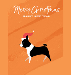 christmas and new year holiday boston terrier dog vector image