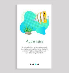 aquaristics fish floating in water seaweed stones vector image