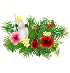 Cartoon white parrot and butterfly with flowers an vector