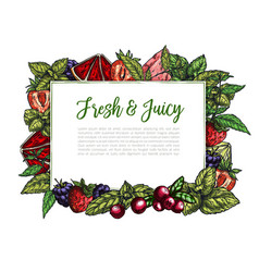 Colorful realistic frame composed of berries vector