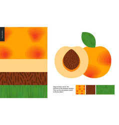 Food patterns fruit apricot vector