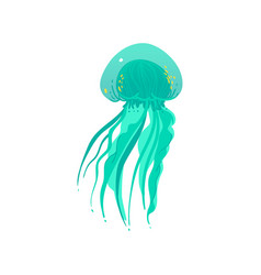 Teal green jellyfish drawing with long tentacles vector