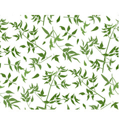 Seamless pattern vine leaf different branches vector