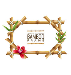 bamboo frames background asian nature geometrical vector image
