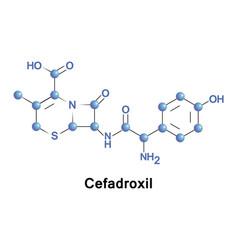 Cefadroxil bactericidal antibiotic vector