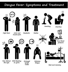dengue fever symptoms and treatment aedes vector image