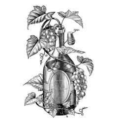 grapes twing in wine bottle black and white clip vector image