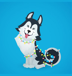 husky dog sitting with garland christmas lights vector image