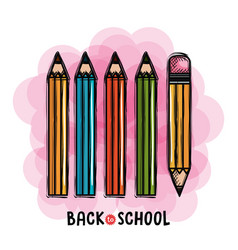pencils colors set back to school drawing vector image