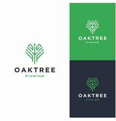 Tree and root logo icon vector