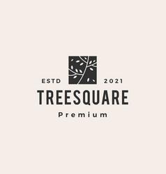 tree square hipster vintage logo icon vector image