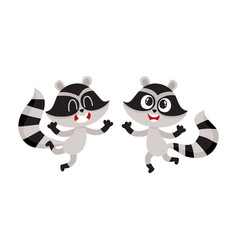 two cute little raccoon characters jumping from vector image