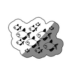 sticker silhouette set collection fish aquatic vector image vector image