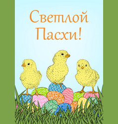 easter eggs and chickens vector image vector image