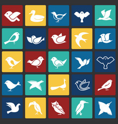 bird icons set on color squares background for vector image
