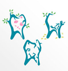 Dental health and tooth life stage concept vector
