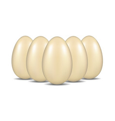 eggs with shadow standing in formation vector image