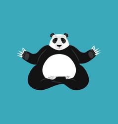 panda yoga chinese bear yogi animal zen and relax vector image