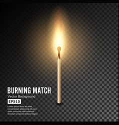 realistic burning match matchstick flame vector image