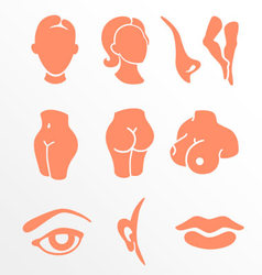 Body parts and face zones icon set vector image