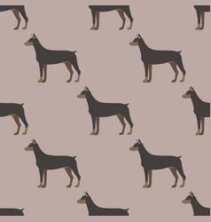 funny cartoon doberman dog character bread vector image vector image
