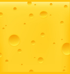 cheese yellow background vector image
