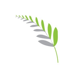 Abstract fern leaf icon vector