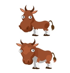 Brown cow and bull on a white background vector