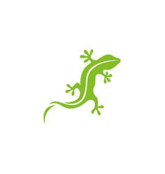 gecko green logo symbol vector image