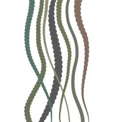 Hair Braids vector