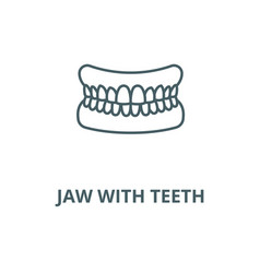 Jaw with teeth line icon linear concept vector