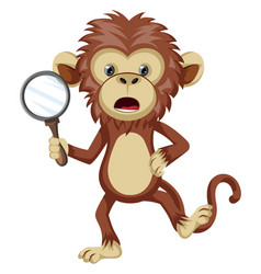 monkey with magnifying glass on white background vector image