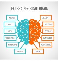 Brain hemispheres infographics vector image