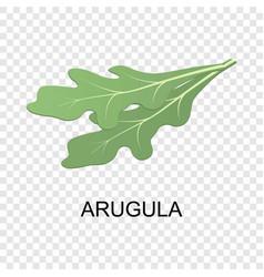 arugula icon isometric style vector image