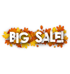 big sale banner with orange leaves vector image