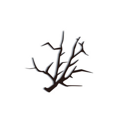 black dead tree branch silhouette isolated on vector image