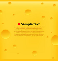 Cheese yellow background vector
