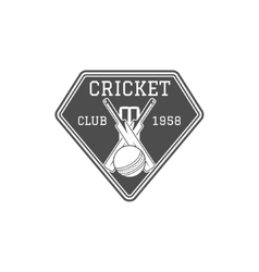 Cricket club emblem and design elements team vector image