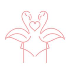 Flamingo cartoon vector