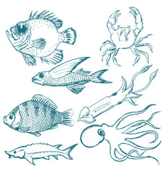 set of underwater life vector image