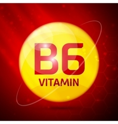 Vitamin B6 icon vector image