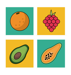 White background with frames of fruits orange vector