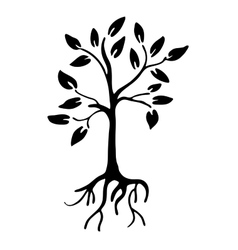 Hiqh quality Tree silhouette with leaves and roots vector image vector image