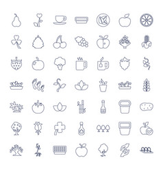 49 leaf icons vector