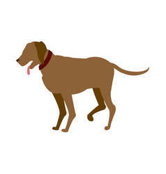 Carton dog walking pet animal vector