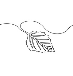 continuous one line drawing tree leaf nature vector image