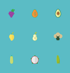 flat icons cluster mango bean and other vector image